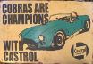 Ford Cobra 's are Champions